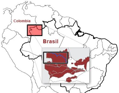 Yuruparí: cosmología ancestral de Sudamérica, cosmología sumeria y Las Pléyades (4/6)